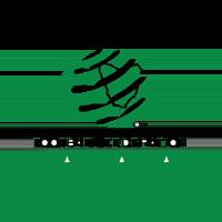 북부 테즈메이니아 챔피언십 통계