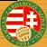 U19 League Logo