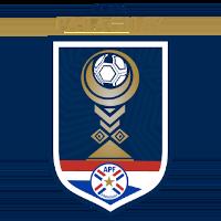 Copa Paraguay Stats