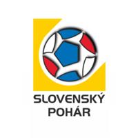 슬로바키아 컵 통계