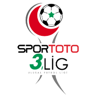 3. Lig Group 3 Logo
