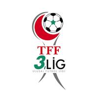トルコサッカー連盟3部リーグ・プレーオフ データ