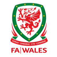 FAW Championship South Logo