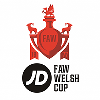Welsh Cup Stats