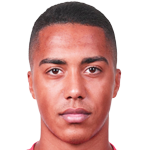 Youri Tielemans Stats and History.