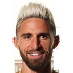 Fabio Borini Stats and History.