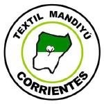 Club Social y Deportivo Textil Mandiyú - Torneo Federal A Stats