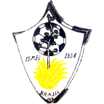 SV Brazil Juniors Badge