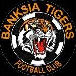 Banksia Tigers