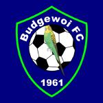 Budgewoi FC