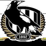Collingwood City FC