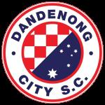 Dandenong City SC Under 21