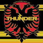 Dandenong Thunder SC logo