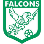 Enfield City Falcons