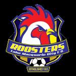 Lake Macquarie City FC Under 20 Badge