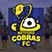 Metford Cobras FC データ