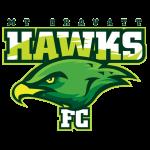 Mount Gravatt Hawks SC Reserves