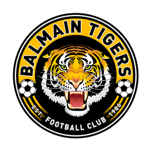 Northern Tigers Badge