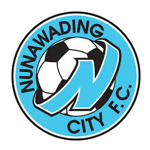 Card Stats for Nunawading City FC