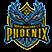 South Maitland Football Club Phoenix データ