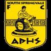 South Springvale SC