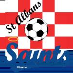 St. Albans Saints FC Under 21