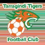 Tarragindi Tigers FC