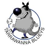 Tarrawanna Blueys SC