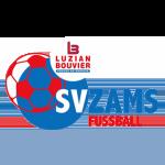 SV Zams Badge