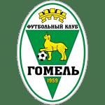 FK Gomel SDJuShOR 8