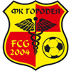 Card Stats for FK Gorodeya