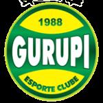 グルピEC ロゴ