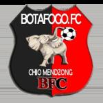 Botafogo FC de Douala