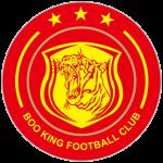 Shanghai Jiading Logo