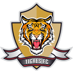 Card Stats for Tigres FC