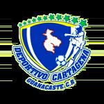 Deportivo Cartagena-Guanacaste S.A.D - Liga de Ascenso Stats