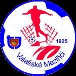 TJ Valašské Meziříčí Badge