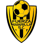 Card Stats for Fuerza Amarilla SC