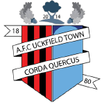 AFC Uckfield Town