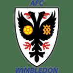 AFC Wimbledon County Cup