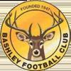 Bashley FC Badge