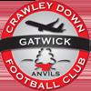 Crawley Down Gatwick FC Badge