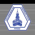 Loughborough Foxes Badge