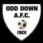 Odd Down AFC Badge