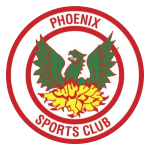 Card Stats for Phoenix Sports FC