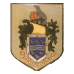 Selsey FC Badge