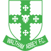 Waltham Abbey FC Badge