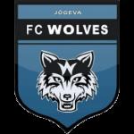 FC Äksi Wolves Badge