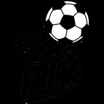 PJK Pirkkala Badge