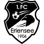 1. FC 1906 Erlensee - Oberliga Hessen Stats